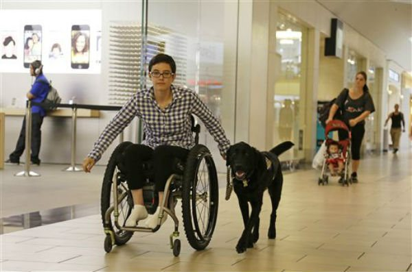 Where Is My Service Dog Allowed to Go?