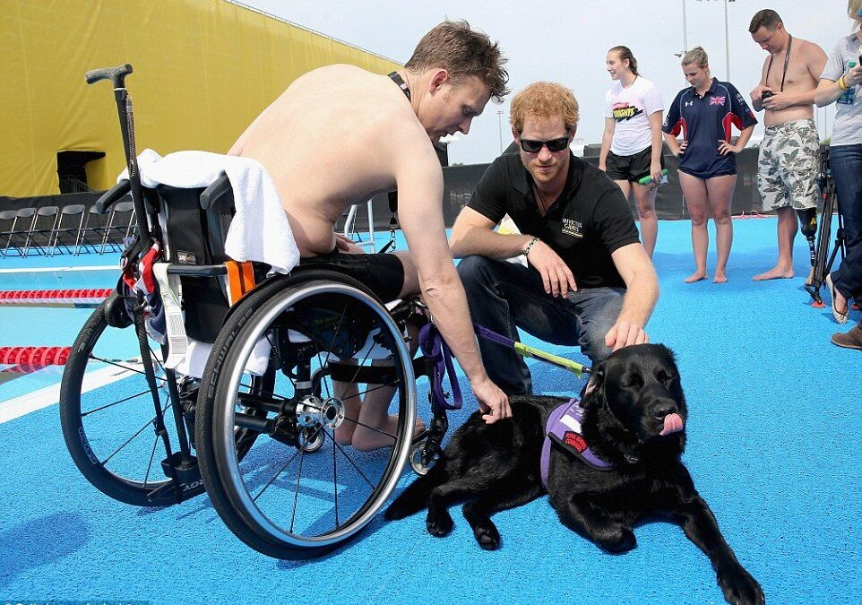 Are Gyms, Hotels or Municipalities With Swimming Pools Required to Allow a Service Animal in the Pool with its Handler?