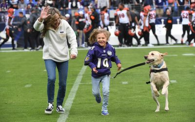 Service Dog, Teddy, Chosen to Retrieve Kick Off Tee by the Baltimore Ravens To Promote Service Dog Awareness