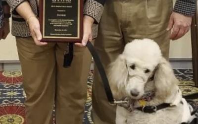 Amazing Tails Graduate, Daphne, Receives Service Dog Hero Award from Delaware Veterinary Medical Association (DVMA)