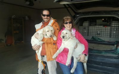 DO YOU LIKE PLAYING WITH AND LEARNING ABOUT TRAINING PUPPIES AND DOGS?